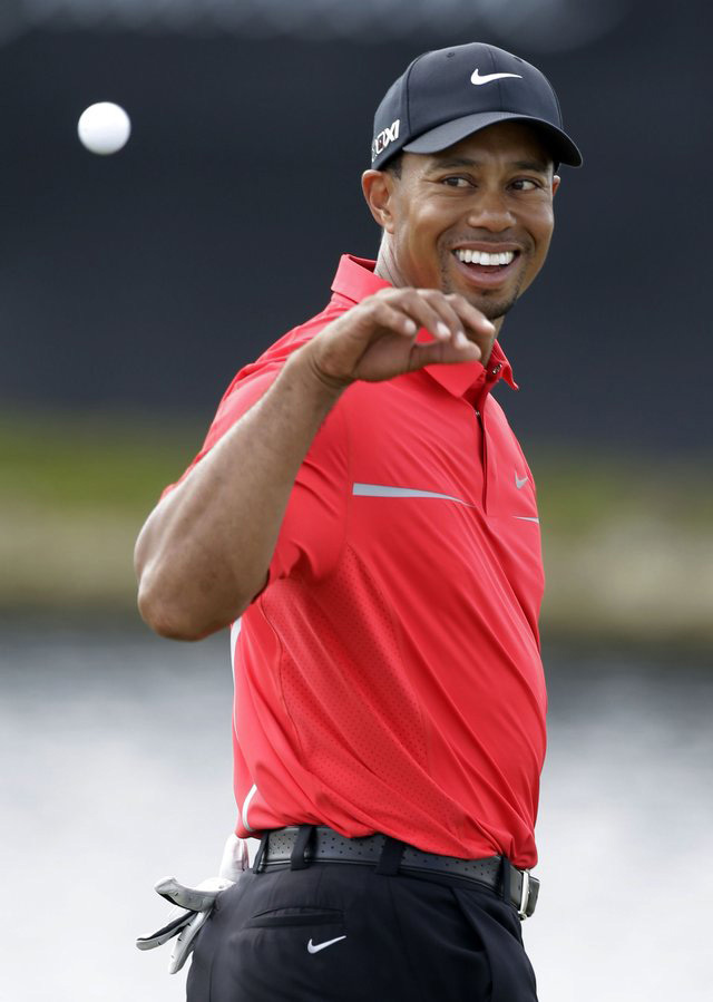 Image of Tiger Woods by Wilfredo Lee