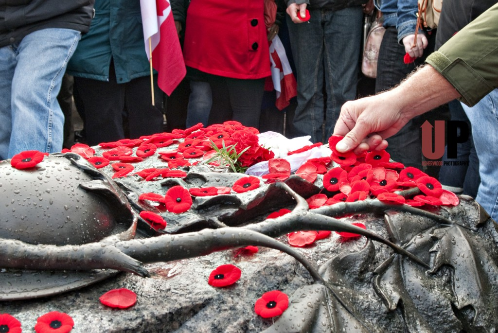 Opinions_Remembrance day