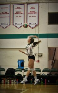 sports_volleyball-3