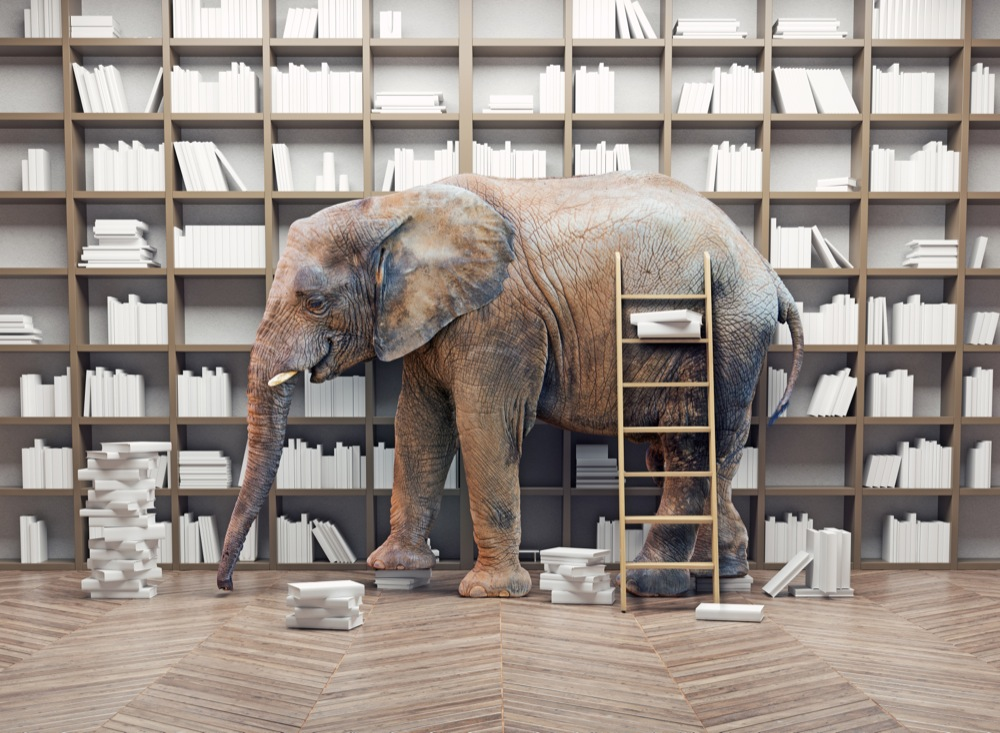 elephant  in the  library